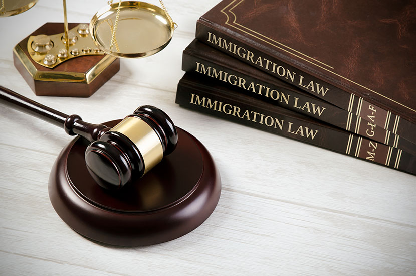 Reasons to Hire the Services of an Immigration Lawyer